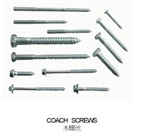 coach screws